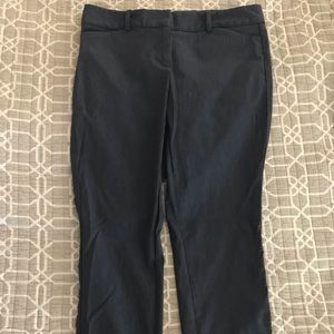 The Limited cropped pant size 8